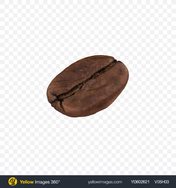 Download Coffee Bean Transparent PNG on Yellow Images 360°