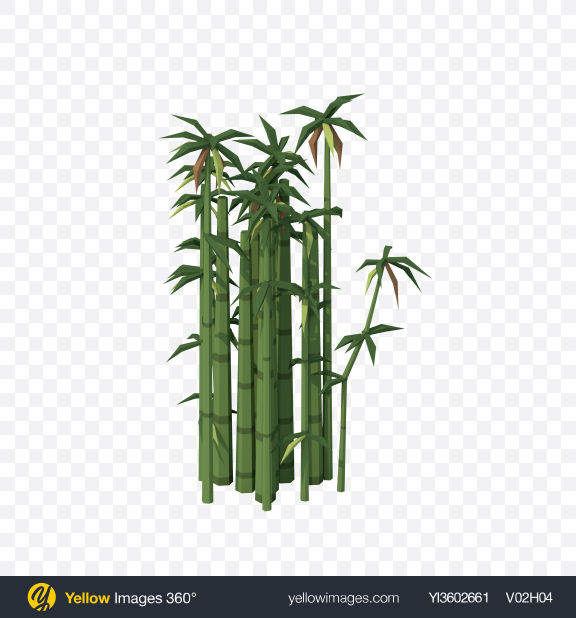 Download Low Poly Bamboo Transparent PNG on Yellow Images 360°