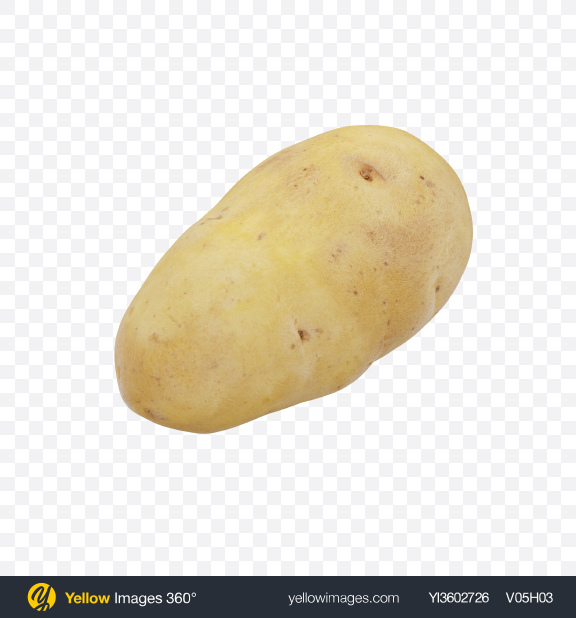 Download Potato Transparent PNG on Yellow Images 360°