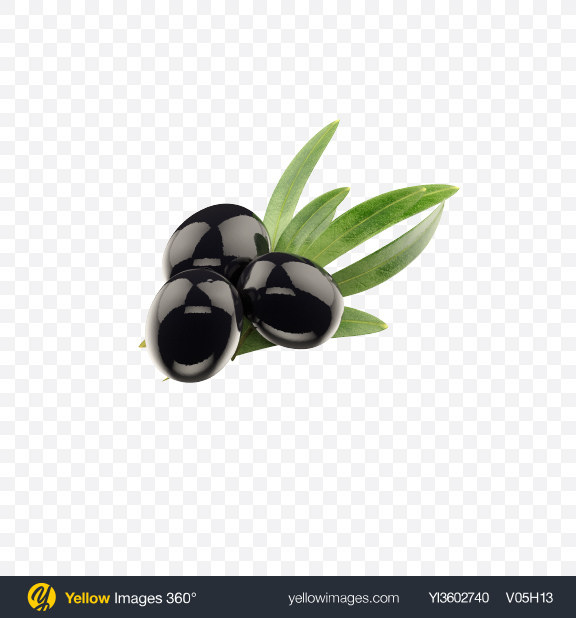 Download Black Olives with Leaves Transparent PNG on Yellow Images 360°