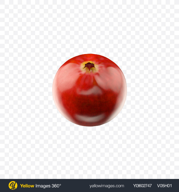 Download Lingonberry Transparent PNG on Yellow Images 360°