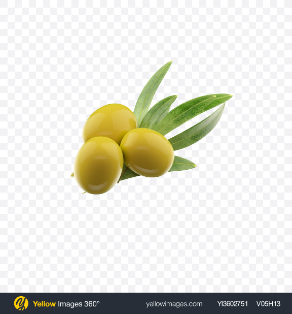 Download Green Olives with Leaves Transparent PNG on Yellow Images 360°