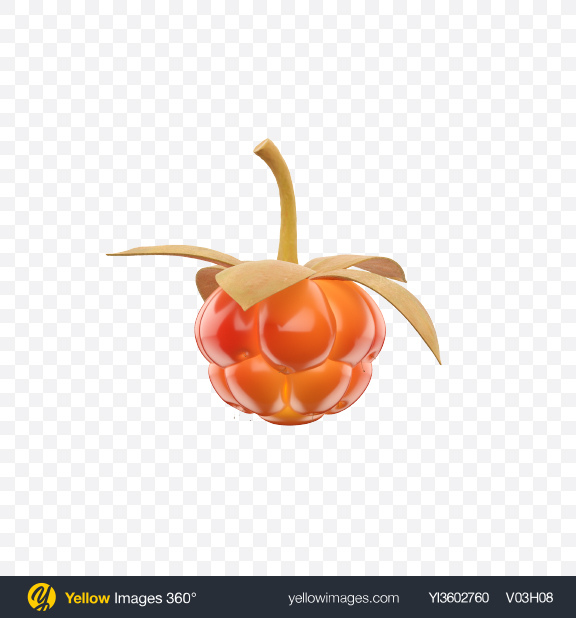Download Cloudberry Transparent PNG on Yellow Images 360°