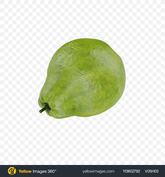 Download White Guava Transparent PNG on Yellow Images 360°