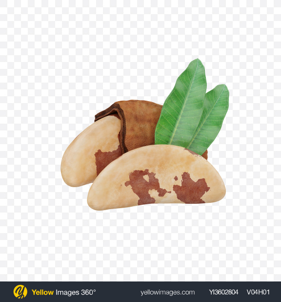 Download Brazil Nuts Transparent PNG on Yellow Images 360°