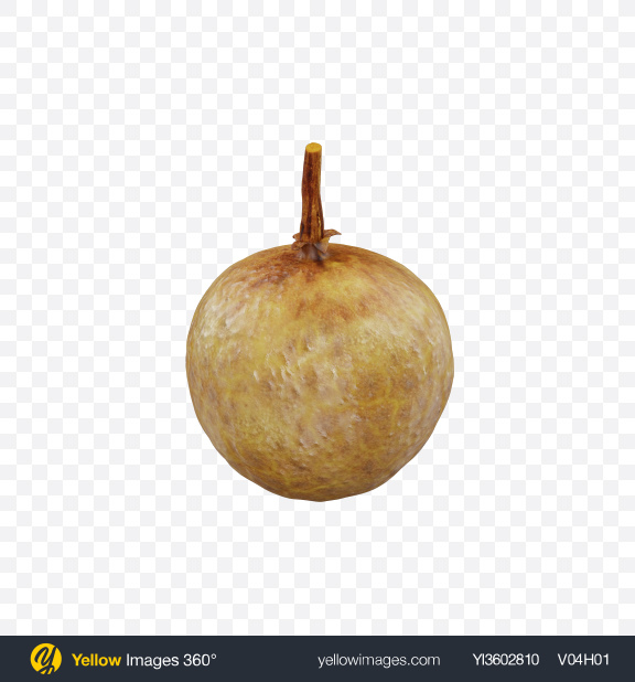 Download Longan Transparent PNG on Yellow Images 360°