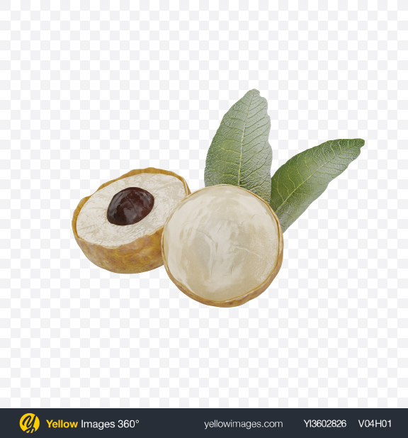 Download Longans Transparent PNG on Yellow Images 360°