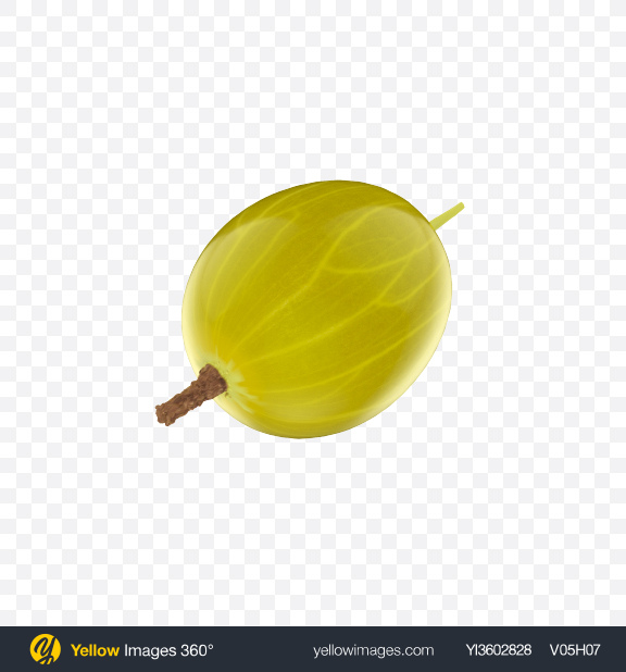Download Green Gooseberry Transparent PNG on Yellow Images 360°