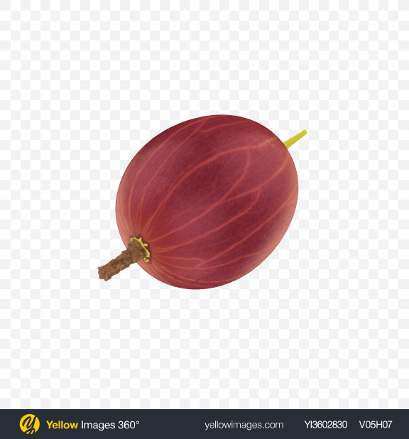 Download Red Gooseberry Transparent PNG on Yellow Images 360°