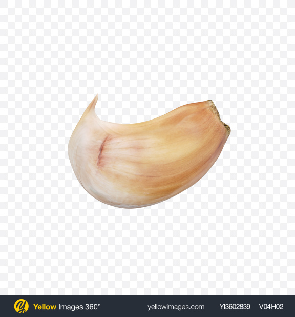 Download Clove of Garlic Transparent PNG on Yellow Images 360°