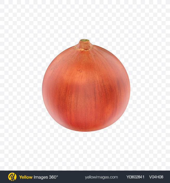 Download Onion Transparent PNG on Yellow Images 360°