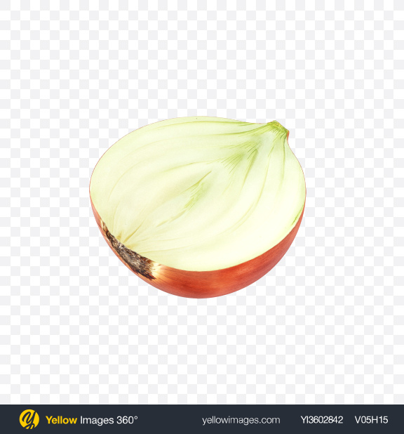 Download Half of Onion Transparent PNG on Yellow Images 360°