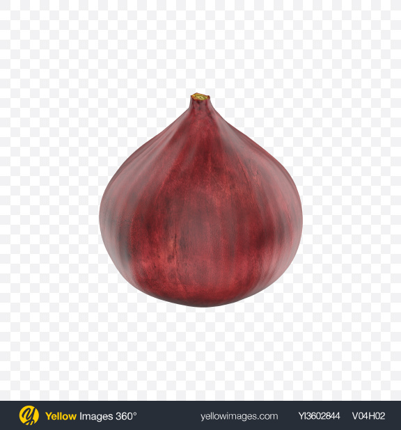 Download Red Onion Transparent PNG on Yellow Images 360°