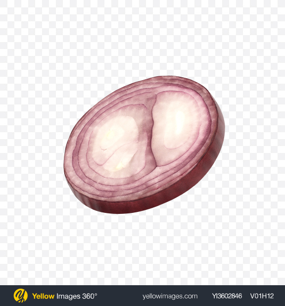 Download Red Onion Slice Transparent PNG on Yellow Images 360°