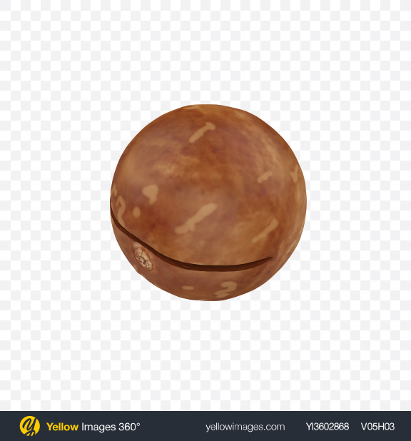 Download Macadamia Transparent PNG on Yellow Images 360°