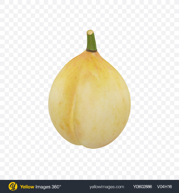 Download Nutmeg Transparent PNG on Yellow Images 360°