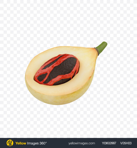 Download Nutmeg in Husk Transparent PNG on Yellow Images 360°