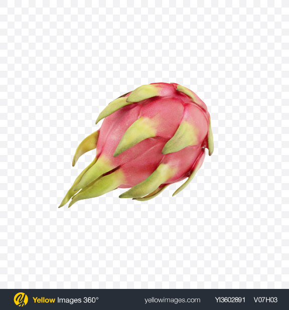 Download Pitahaya Fruit Transparent PNG on Yellow Images 360°