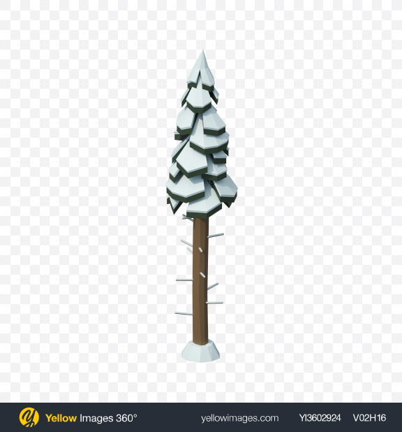 Download Low Poly Snow Covered Tall Fir Transparent PNG on Yellow Images 360°