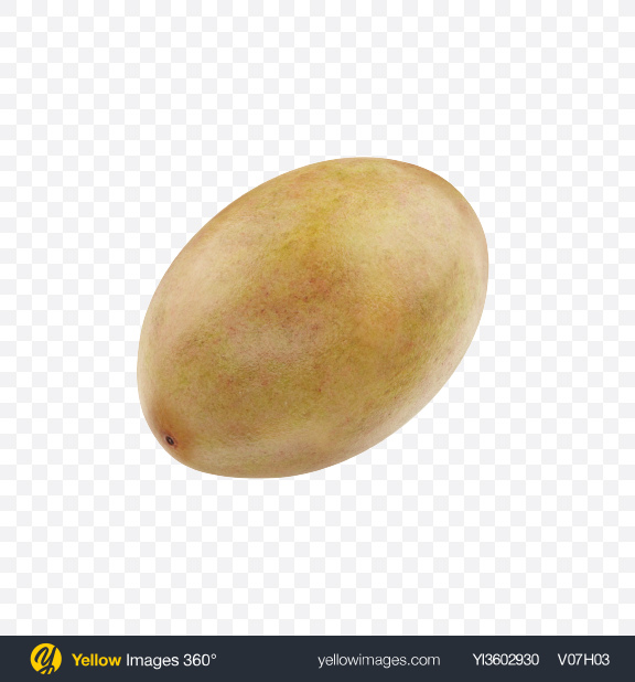 Download Sapodilla Transparent PNG on Yellow Images 360°