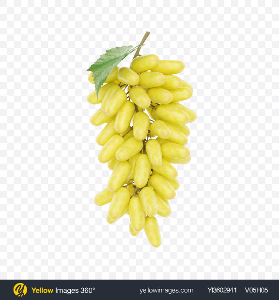 Download Bunch of Lady Finger Grapes Transparent PNG on Yellow Images 360°