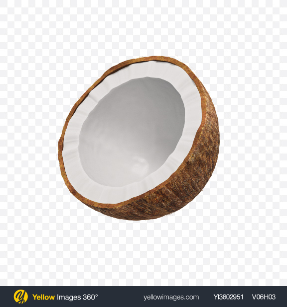 Download Half of Coconut Transparent PNG on Yellow Images 360°