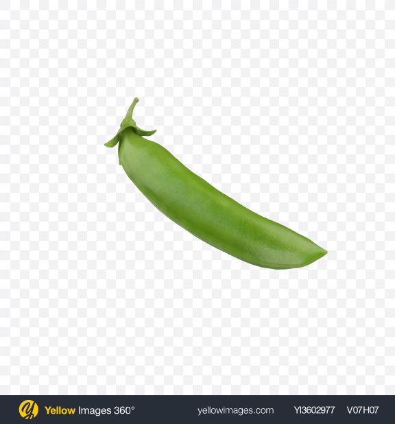 Download Pea Pod Transparent PNG on Yellow Images 360°