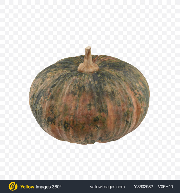 Download Kabocha Transparent PNG on Yellow Images 360°