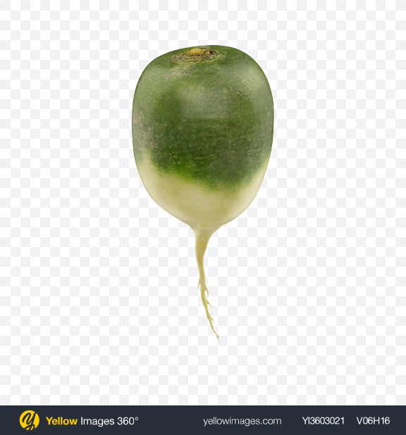 Download Green Radish Transparent PNG on Yellow Images 360°