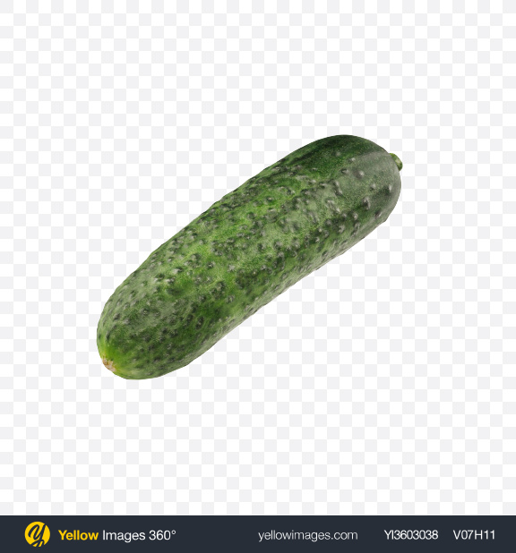 Download Cucumber Transparent PNG on Yellow Images 360°