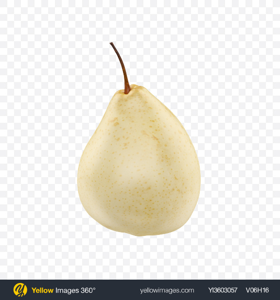Download White Pear Transparent PNG on Yellow Images 360°
