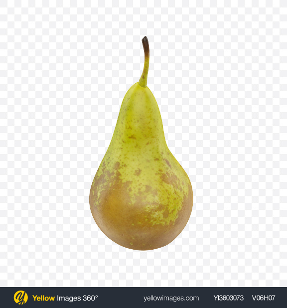 Download Conference Pear Transparent PNG on Yellow Images 360°