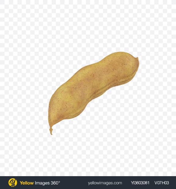 Download Soybean Pod Transparent PNG on Yellow Images 360°