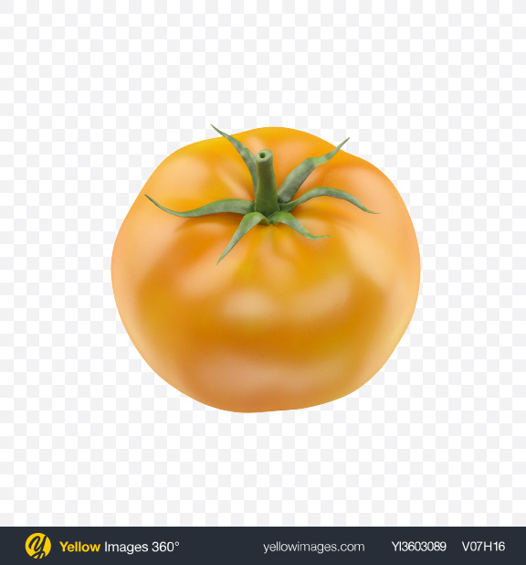 Download Yellow Tomato Transparent PNG on Yellow Images 360°