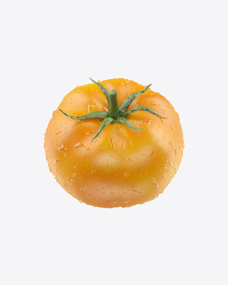 Yellow Tomato with Water Drops