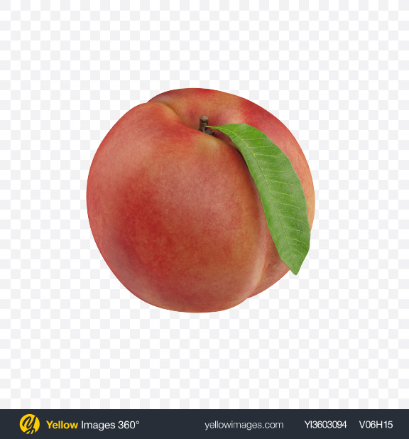 Download Peach with Leaf Transparent PNG on Yellow Images 360°