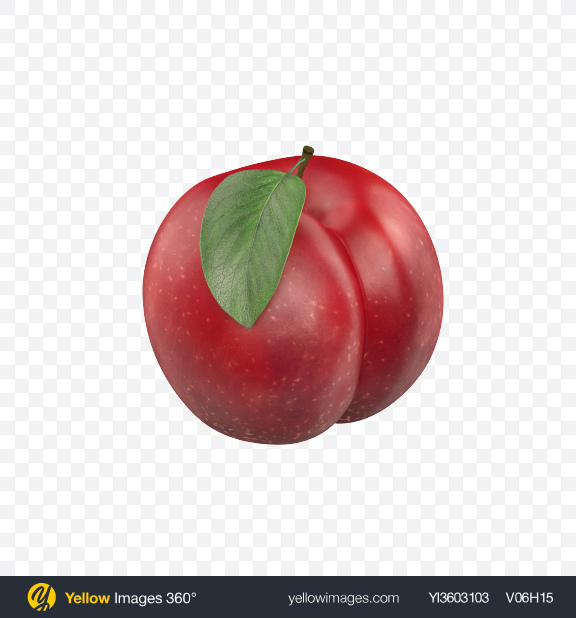 Download Plum with Leaf Transparent PNG on Yellow Images 360°