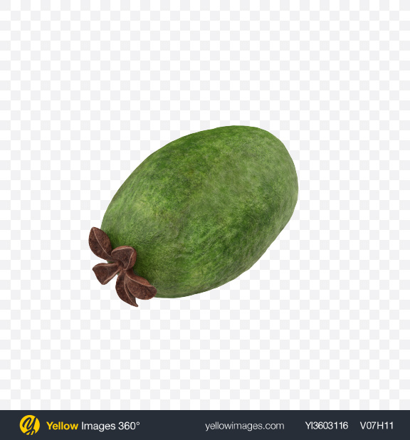 Download Feijoa Transparent PNG on Yellow Images 360°