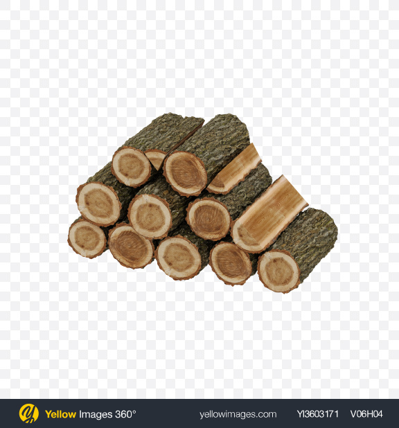 Download Oak Pile Transparent PNG on Yellow Images 360°