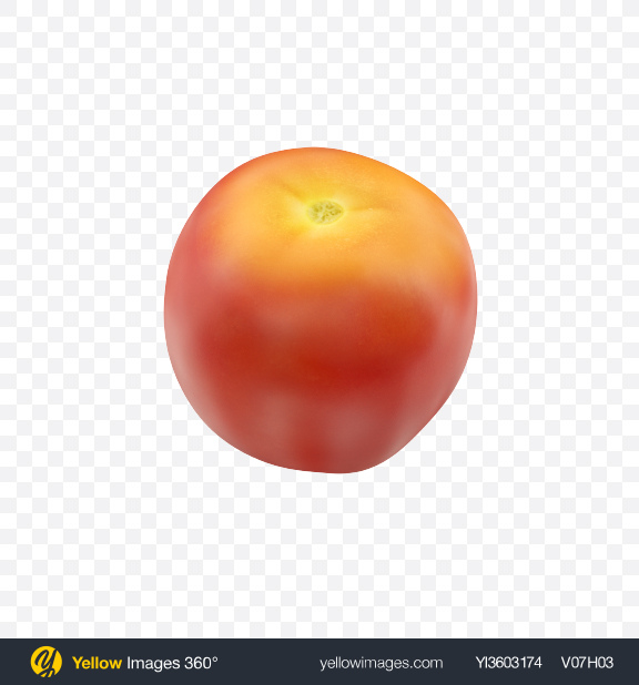Download Red Yellow Tomato Transparent PNG on Yellow Images 360°