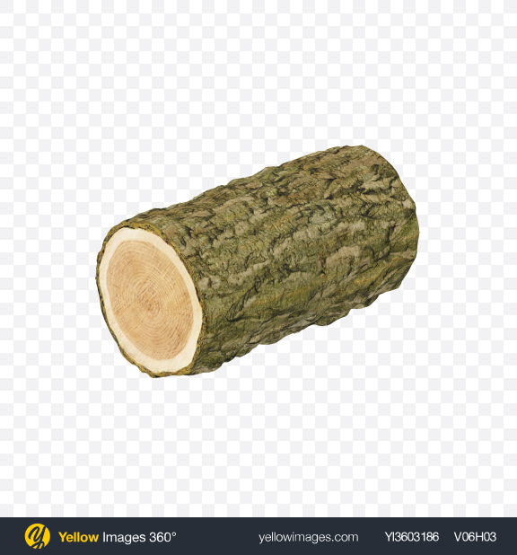 Download Pine Log Transparent PNG on Yellow Images 360°