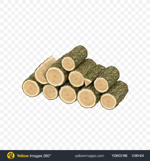 Download Pine Pile Transparent PNG on Yellow Images 360°