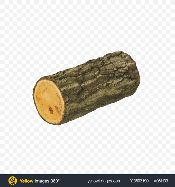 Download Maple Log Transparent PNG on Yellow Images 360°