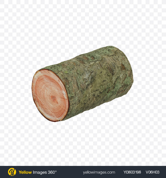 Download Larch Log Transparent PNG on Yellow Images 360°
