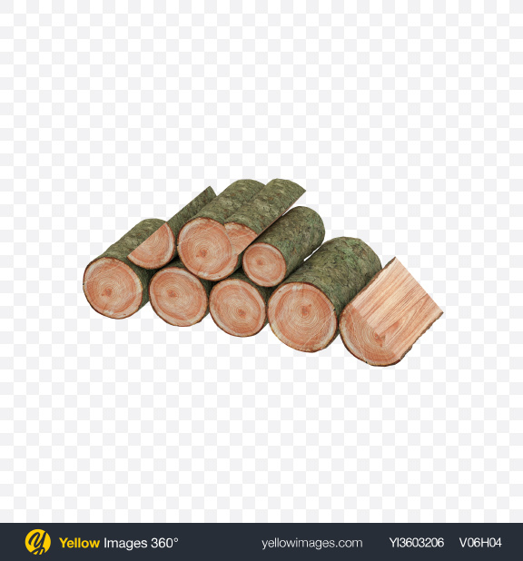 Download Larch Pile Transparent PNG on Yellow Images 360°