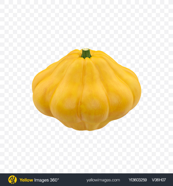 Download Pattypan Squash Transparent PNG on Yellow Images 360°