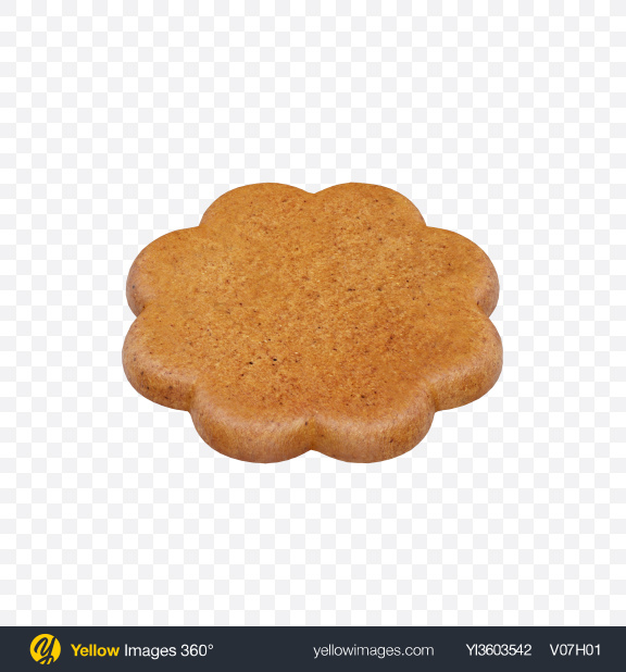 Download Gingerbread Cookie Transparent PNG on Yellow Images 360°