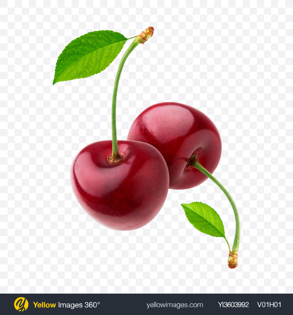 Download Two Cherries Transparent PNG on YELLOW Images