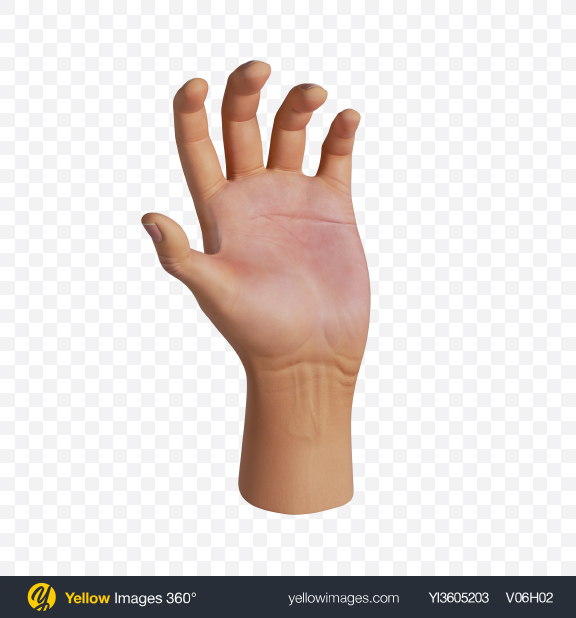 Download Human Hand Grab Gesture Transparent PNG on YELLOW Images