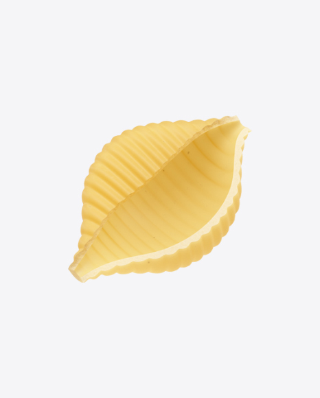 Conchiglie Rigate Pasta